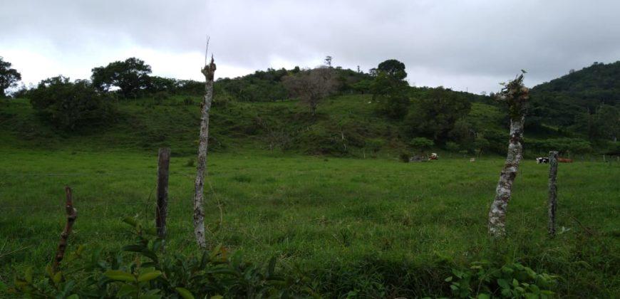 Venta de Hermoso Terreno para Desarrollar en Volcán, Chiriquí