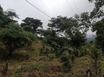 TERRENO EN VENTA, UBICADO EN BOQUETE, PARQUE NACIONAL DEL VOLCAN BARU, BOQUETE, CHIRIQUI